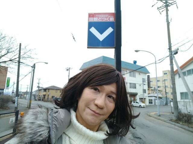 f:id:hikarireinagatsuki:20210315110358j:image