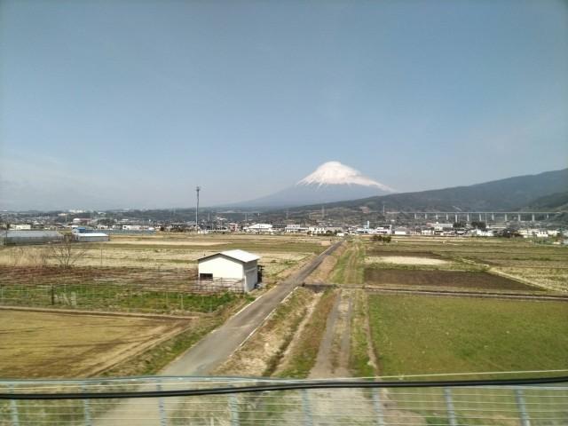 f:id:hikarireinagatsuki:20210316115502j:image