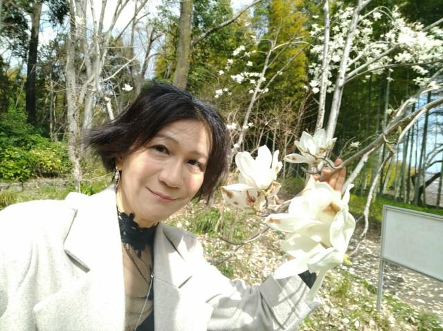 f:id:hikarireinagatsuki:20210322180604j:image