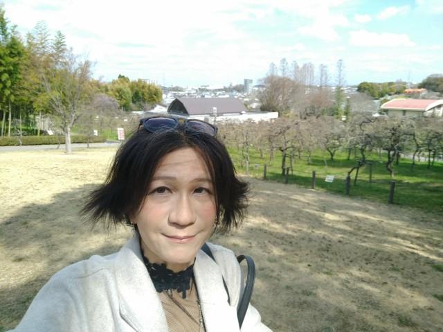 f:id:hikarireinagatsuki:20210322180826j:image