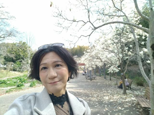 f:id:hikarireinagatsuki:20210322180926j:image