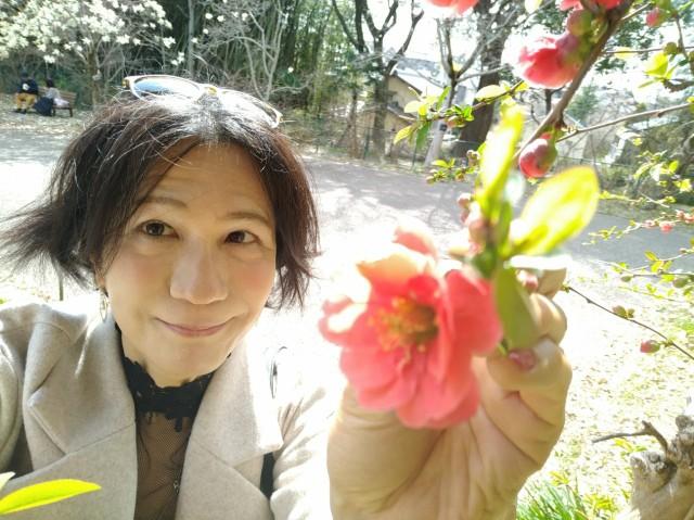 f:id:hikarireinagatsuki:20210322180940j:image