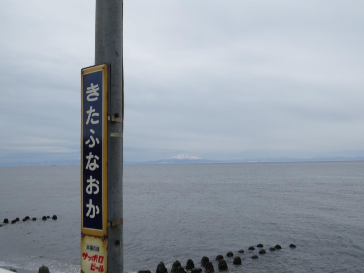 f:id:hikarireinagatsuki:20210324204215j:plain