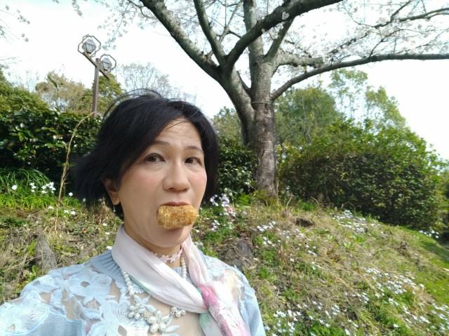 f:id:hikarireinagatsuki:20210329233050j:image