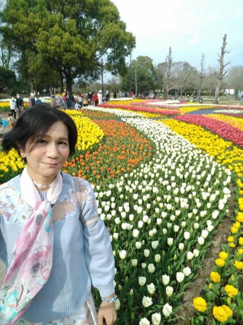 f:id:hikarireinagatsuki:20210329233129j:image