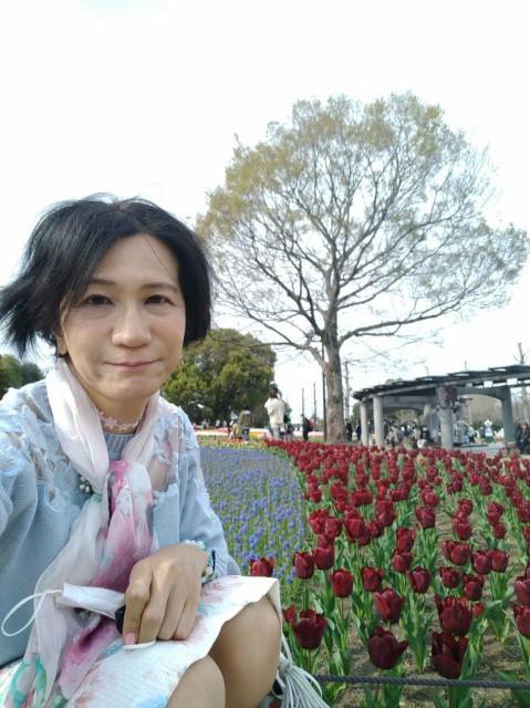 f:id:hikarireinagatsuki:20210329233348j:image