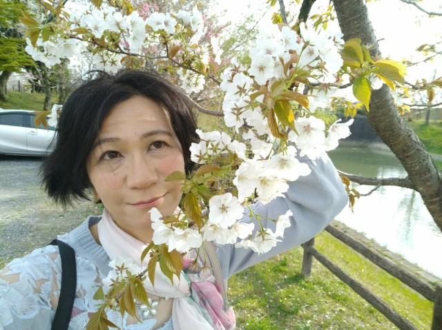 f:id:hikarireinagatsuki:20210329233530j:image