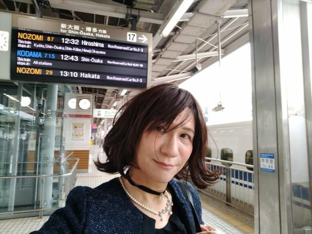 f:id:hikarireinagatsuki:20210404124710j:image