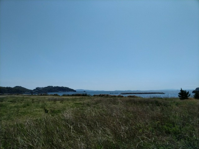 f:id:hikarireinagatsuki:20210411235425j:image