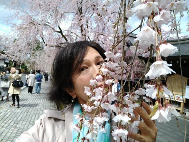 f:id:hikarireinagatsuki:20210419114327j:image