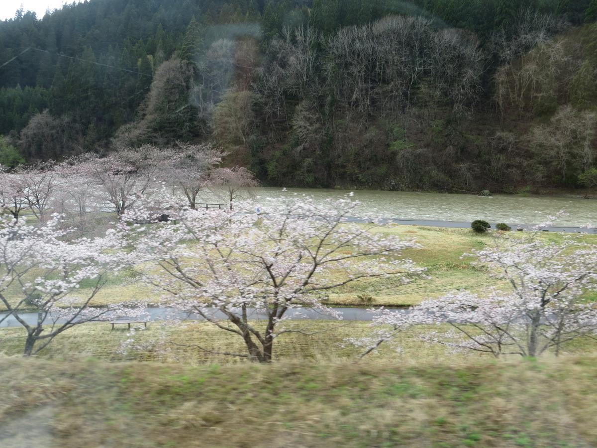 f:id:hikarireinagatsuki:20210422005648j:plain