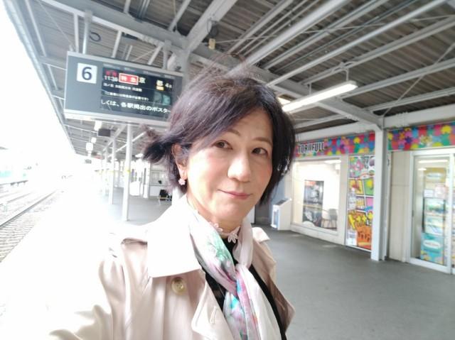 f:id:hikarireinagatsuki:20210506143839j:image