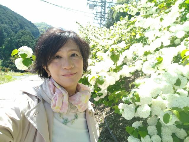 f:id:hikarireinagatsuki:20210508152344j:image