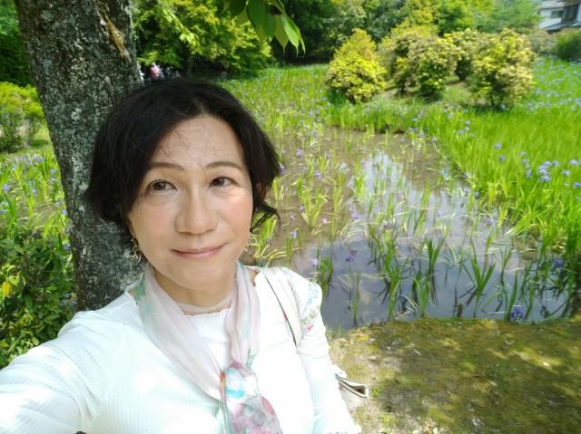 f:id:hikarireinagatsuki:20210508153809j:image
