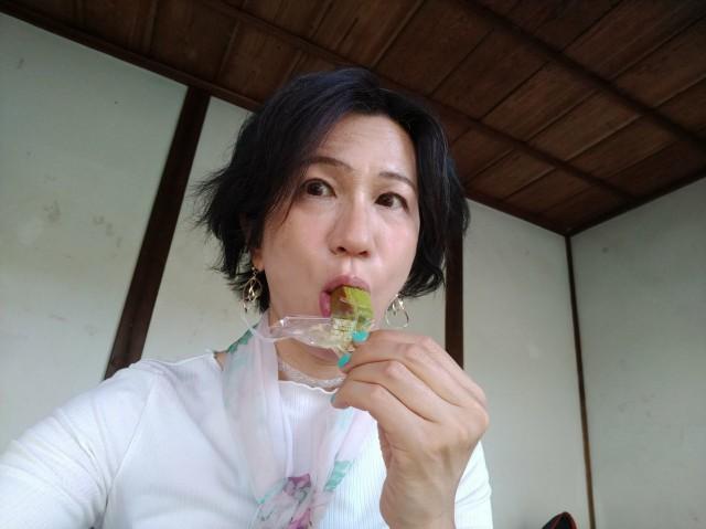 f:id:hikarireinagatsuki:20210508154127j:image