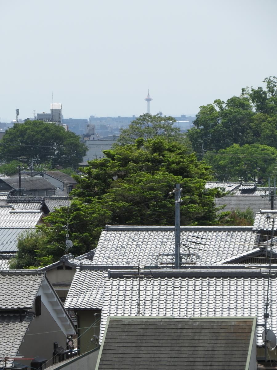 f:id:hikarireinagatsuki:20210510230304j:plain