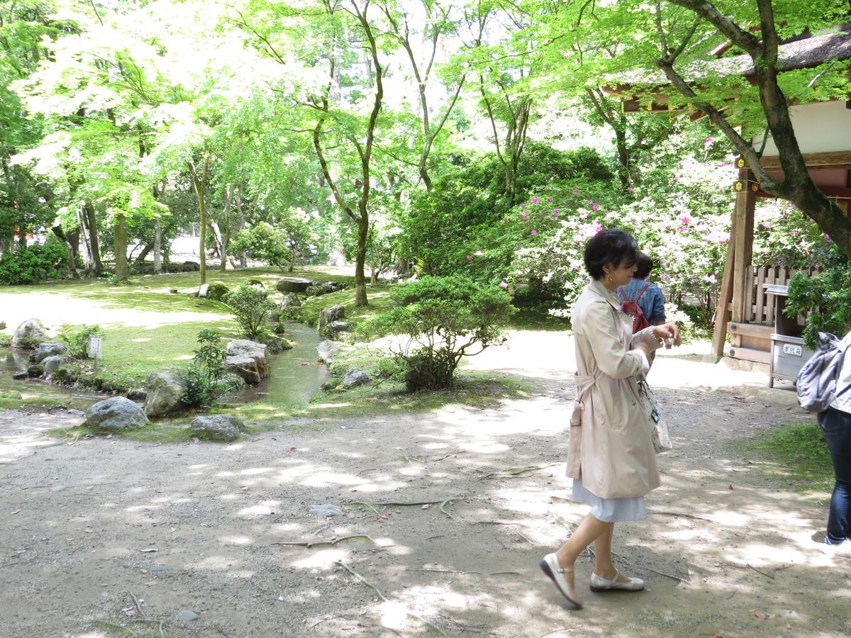 f:id:hikarireinagatsuki:20210511201737j:plain