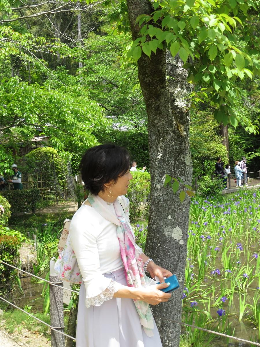 f:id:hikarireinagatsuki:20210511201933j:plain