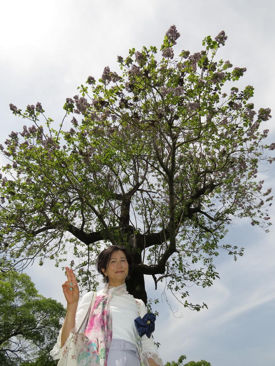 f:id:hikarireinagatsuki:20210511204243j:plain