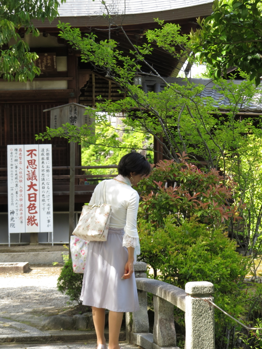 f:id:hikarireinagatsuki:20210511205052j:plain