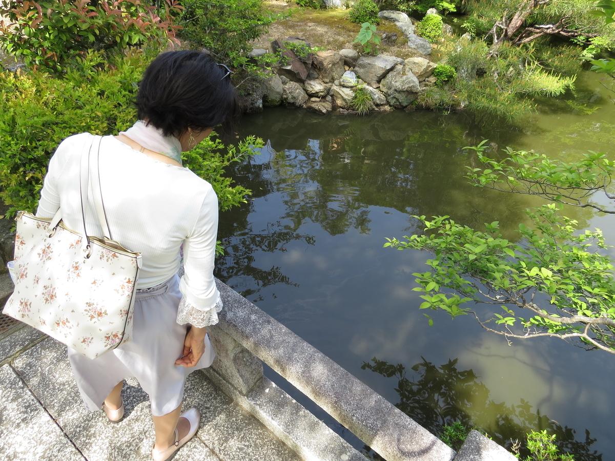 f:id:hikarireinagatsuki:20210511212001j:plain