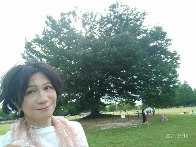 f:id:hikarireinagatsuki:20210517144905j:image