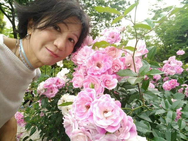 f:id:hikarireinagatsuki:20210518081211j:image