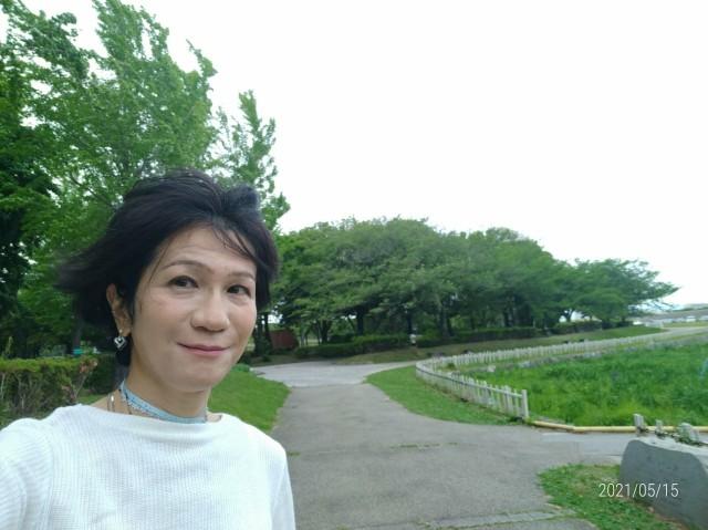 f:id:hikarireinagatsuki:20210518081249j:image
