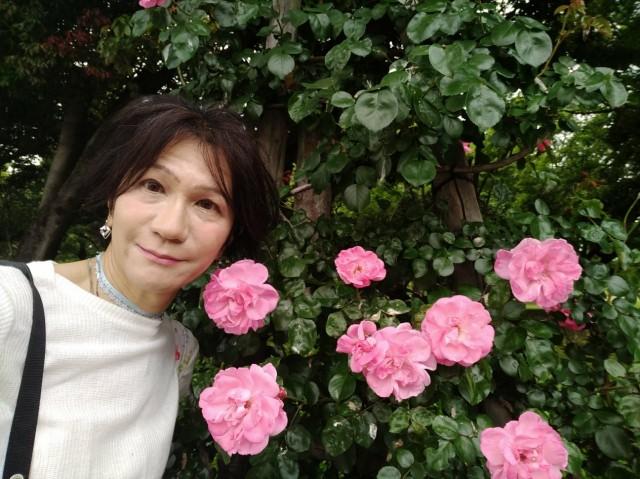 f:id:hikarireinagatsuki:20210518081449j:image