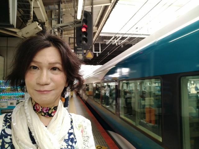 f:id:hikarireinagatsuki:20210529211857j:image
