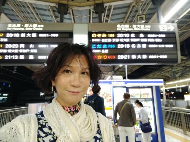 f:id:hikarireinagatsuki:20210602081004j:image
