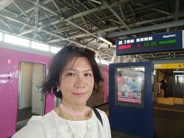 f:id:hikarireinagatsuki:20210606184222j:image