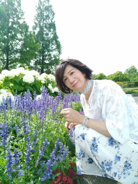 f:id:hikarireinagatsuki:20210619164851j:image