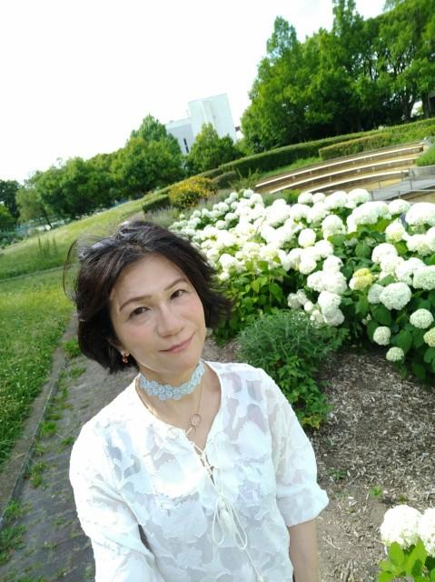 f:id:hikarireinagatsuki:20210619164940j:image