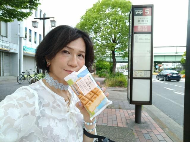 f:id:hikarireinagatsuki:20210619165105j:image