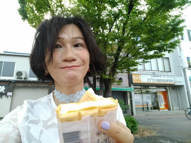 f:id:hikarireinagatsuki:20210619165121j:image