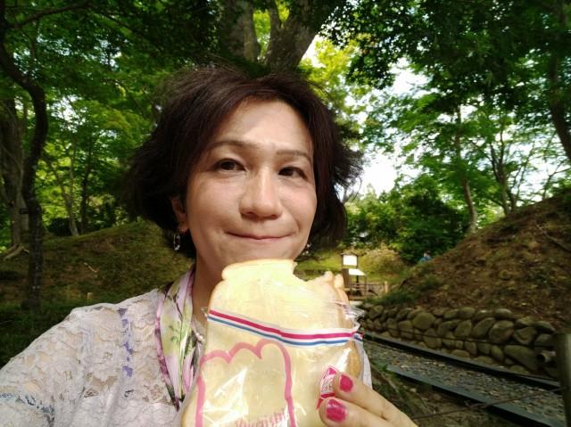 f:id:hikarireinagatsuki:20210628100002j:image