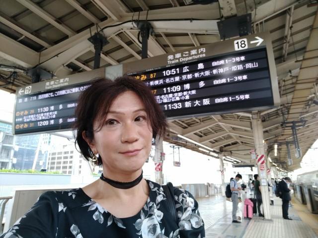 f:id:hikarireinagatsuki:20210708120303j:image