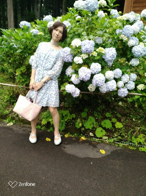 f:id:hikarireinagatsuki:20210711144353j:image