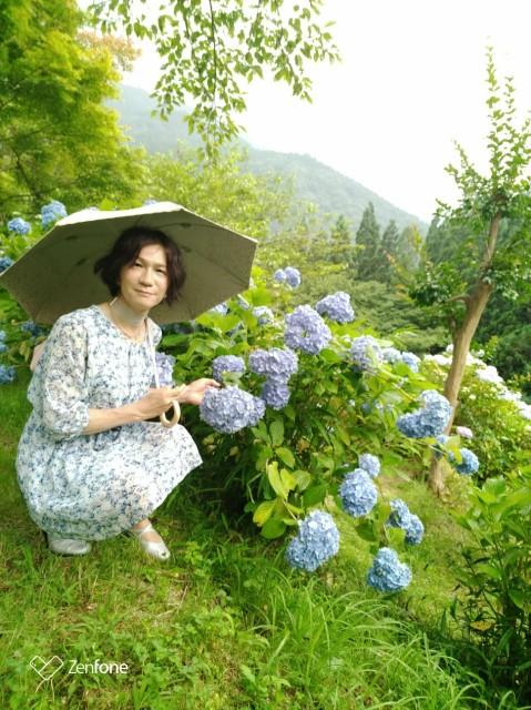 f:id:hikarireinagatsuki:20210711144500j:image