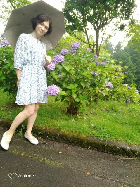 f:id:hikarireinagatsuki:20210711144523j:image