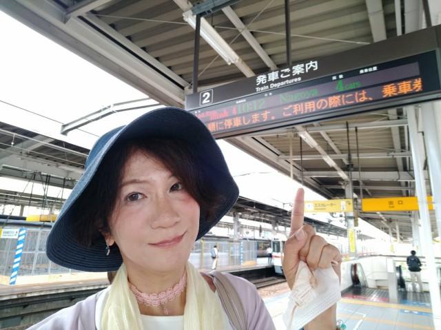 f:id:hikarireinagatsuki:20210729182432j:image