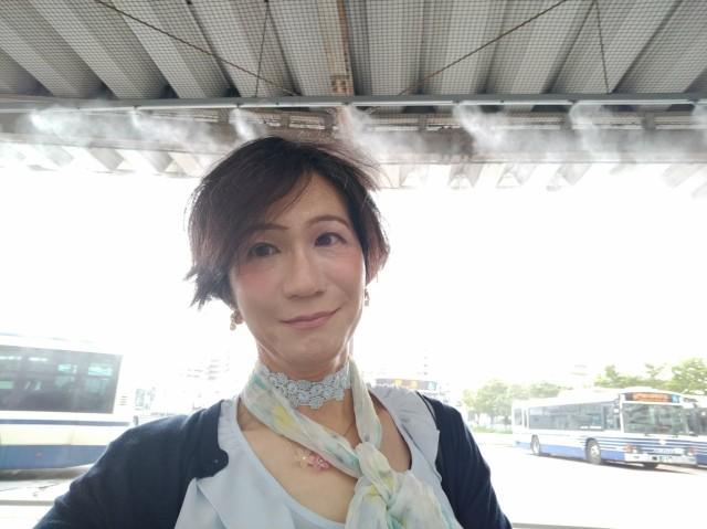 f:id:hikarireinagatsuki:20210824174117j:image