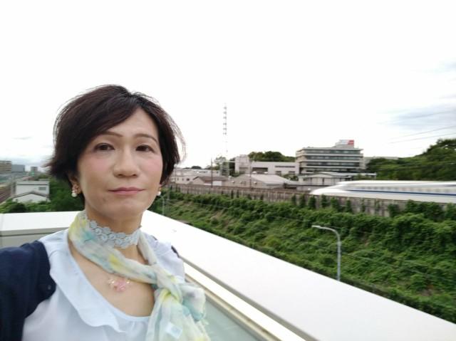 f:id:hikarireinagatsuki:20210824174207j:image