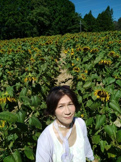 f:id:hikarireinagatsuki:20210830181846j:image