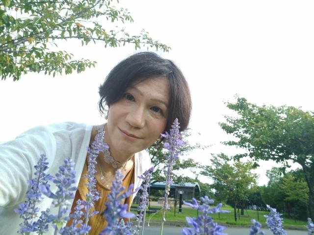f:id:hikarireinagatsuki:20210912105916j:image