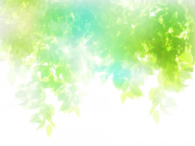 f:id:hikaru-ko:20201125113036j:plain
