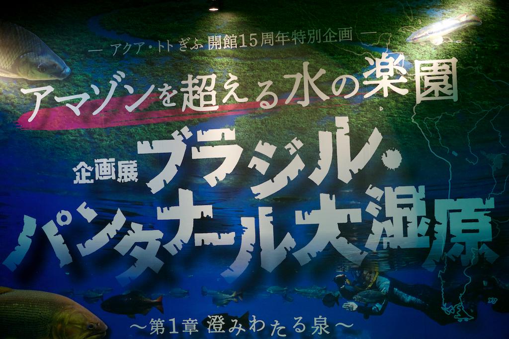 f:id:hikaru-remoteregion:20200114145102j:plain