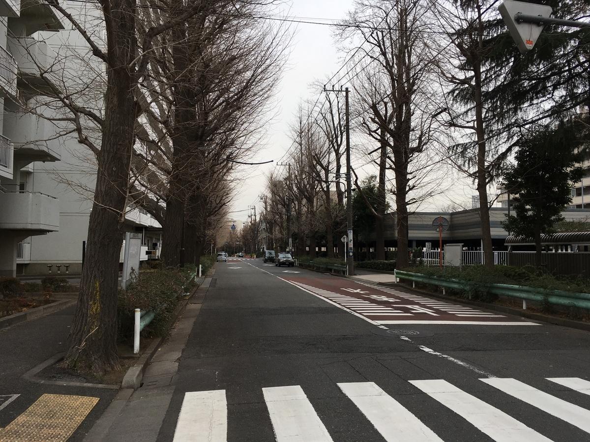 f:id:hikaru217:20200222014823j:plain