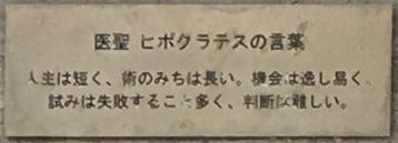 f:id:hikaru217:20200521091052j:plain